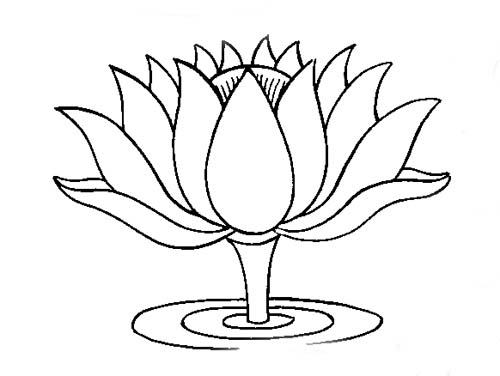 Pin Lotus Flower Outline Drawing on Pinterest